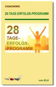 28-Tage-Erfolgs-Programm Buchcover